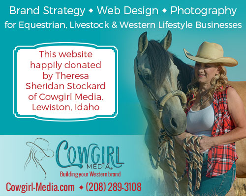 cowgirl media website design and branding